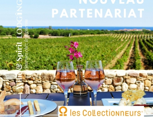 Partenariat Les Collectionneurs et Wine&Spirit Lodging